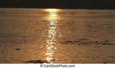 Beautiful Sunset on The Dnipro Riverbank With Golden Sunpath...