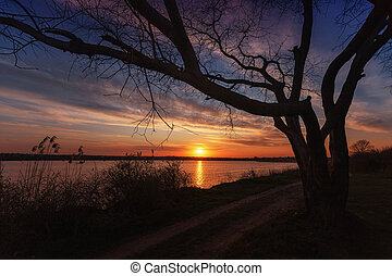 Beautiful sunset on the lake with a tree in the foreground, with clouds and reflections on the water