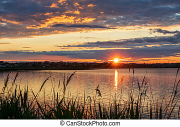 Beautiful sunset on the lake, with reeds in the foreground, the setting sun with rays