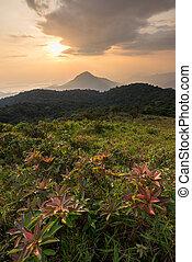 beautiful sunset on the mountain at sanknokwua