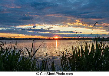 Beautiful sunset on the river, with reeds in the foreground, the setting sun in the form of an asterisk with rays and reflections