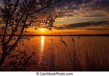 Beautiful sunset on the river with tree branches in the foreground
