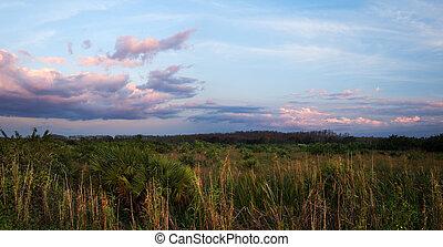 A peaceful calm suset over Florida Everglades sawgrass prairies