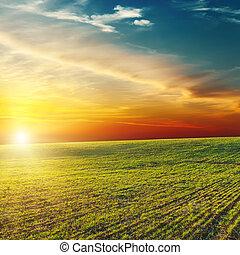 beautiful sunset over green field