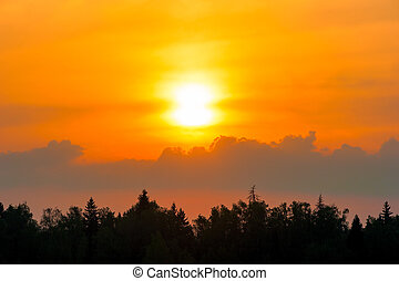 beautiful sunset over the forest and cumulus clouds