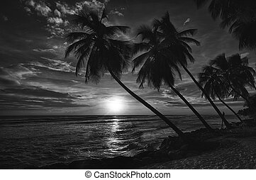 Barbados - Beautiful sunset over the sea with a view at ...