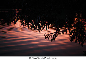 beautiful sunset reflected in the water of the lake