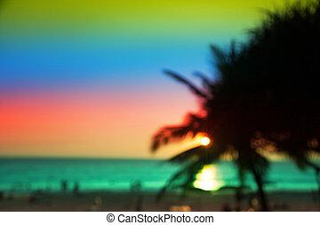 Beautiful sunset with palm