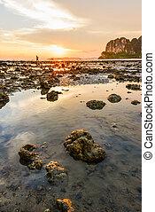 Beautiful sunset with seascape and stone
