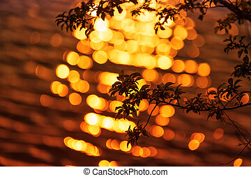 Beautiful sunset with tree branches in the foreground and beautiful bokeh