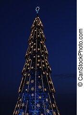 Beautiful tall Christmas tree (at sunset)