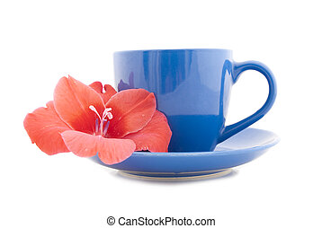 Beautiful tea cup with flower on a white background