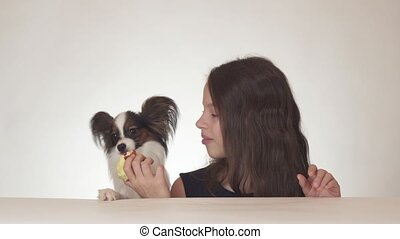 Beautiful teen girl and dog Continental Toy Spaniel Papillon...