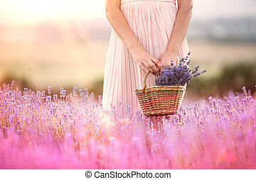 Beautiful teen hipster holding a busket with lavender flowers in a provence lavender field t sunset rays