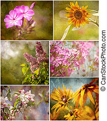 Beautiful textured flowers collage.
