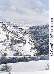 beautiful Tien-Shan mountains in the snow. in winter