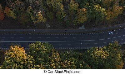 Beautiful top view of a smooth and high-quality country road for cars. Autumn forest aerial view with many colorful trees in warm sunny weather, top view. The vibrant nature of autumn is inspiring.