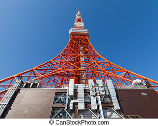 beautiful tower in Tokyo