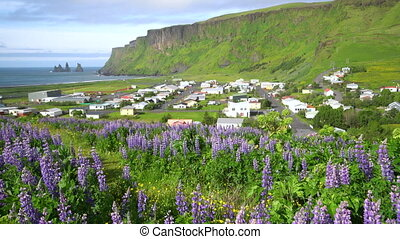 Beautiful town of Vik i Myrdal Iceland in summer. - ...