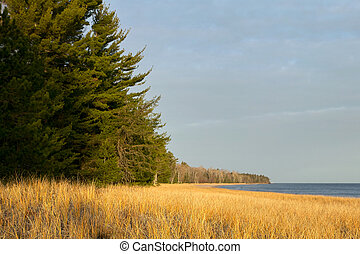 Beautiful tree and grass lined lake in Michigan