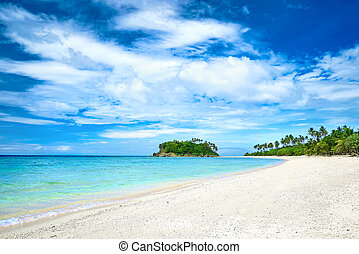 Beautiful tropical beach on the background of palm trees island