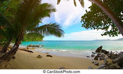 """""""Video 1080p - Gentle surge and foam of the tropical sea as it rolls softly onto a beautiful, boulder strewn, white sand beach with palm trees."""""""