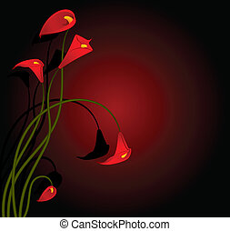 Beautiful tropical red lillies