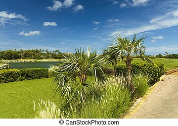 Beautiful tropical natural landscape view. Green grass field and pond water surface on blue sky with rare white clouds background. Aruba island.