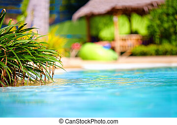 beautiful tropical pool with thatch on background