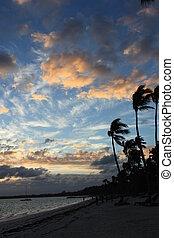 Beautiful tropical sunset