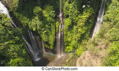 tropical waterfall in green rainforest. Aerial view triple waterfall Sekumpul in mountain jungle. Bali, Indonesia. Travel concept. Aerial footage.