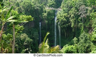 Beautiful tropical waterfall Bali,Indonesia.