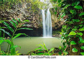 Tropical Waterfall