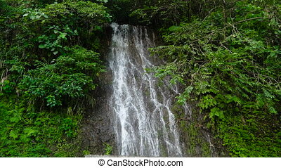 Beautiful tropical waterfall. Philippines Cebu island. -...