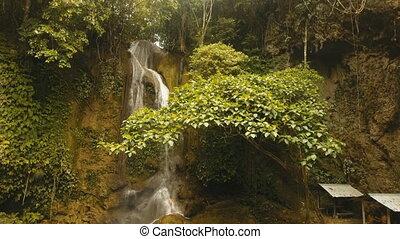 Beautiful tropical waterfall. Philippines Siargao island. -...