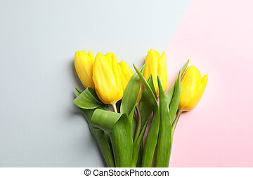 Beautiful tulips on light background, top view