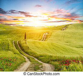 Beautiful Tuscany landscape in sunset with track