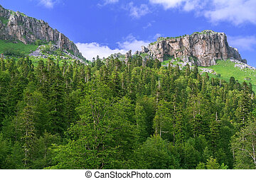 Beautiful valley in the Caucasus mountains