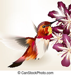 Beautiful vector realistic humming bird with flowers