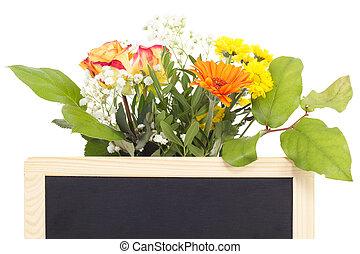 Beautiful vernal flowers behind blank blackboard