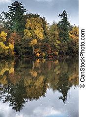 Beautiful vibrant Autumn woodland reflecions in calm lake waters