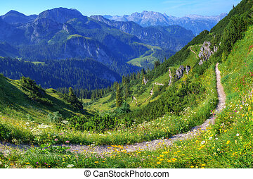 Alps - Beautiful view from top of cableway above the ...