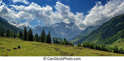 Alps - Beautiful view from top of mountain pass. Alps, ...