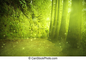 Beautiful view in a mysterious green forest with fairytale ...