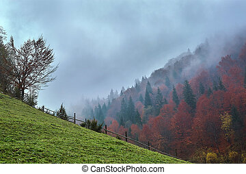 beautiful view of a foggy autumn mountain landscape with a cloudy sky