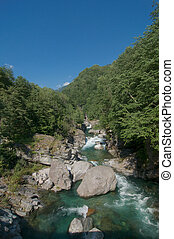 Beautiful view on the Maggia River surrounded by lush green trees in the famous Maggia Valley in the Canton of Ticino, Switzerland on a sunny day