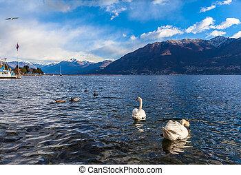 Beautiful view of Maggiore Lake and the Alps from Locarno in Winter, Canton of Ticino, Switzerland.