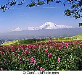 Beautiful view of Mount Ararat.