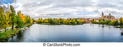 Beautiful view of Salamanca with Rio Tormes and Cathedral, Spain
