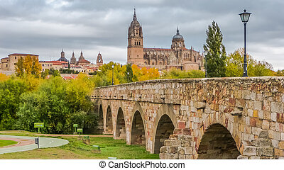 Beautiful view of Salamanca with Roman bridge and Cathedral, Spain